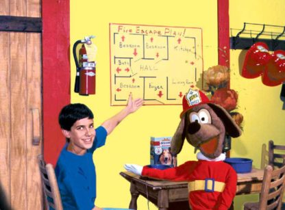 """""""Red the Fire Dog and the Three P's of Fire Safety"""" DVD"""