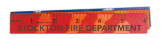 "Custom 6"" Mood Ruler"